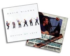 Dual-David-Wilcox